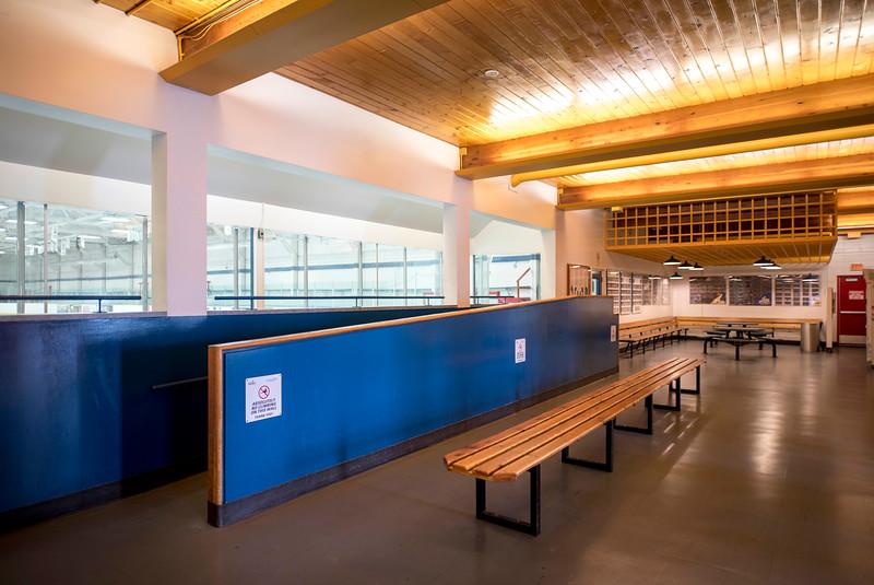 Alexandra Arena viewing area