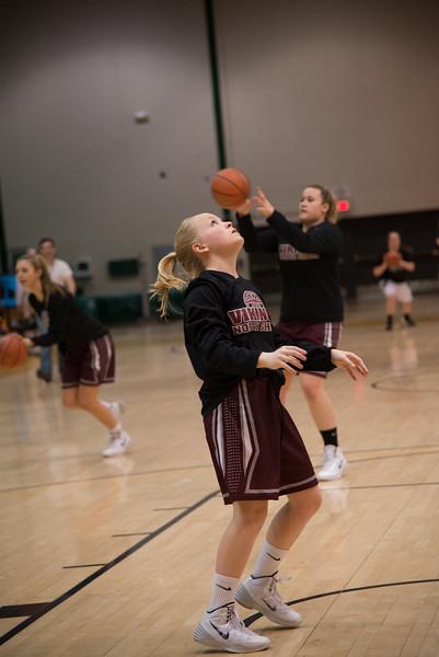 NS Girls Basketball vs Harborfields 3-7-14