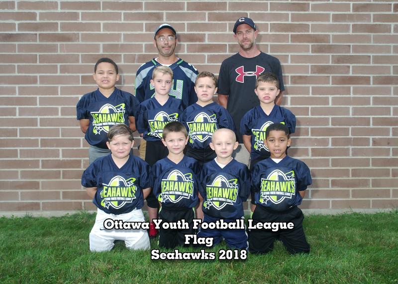 462700-03-3089-flag-seahawks_9.jpg