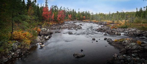 Scenic Fall Pics from Central NL