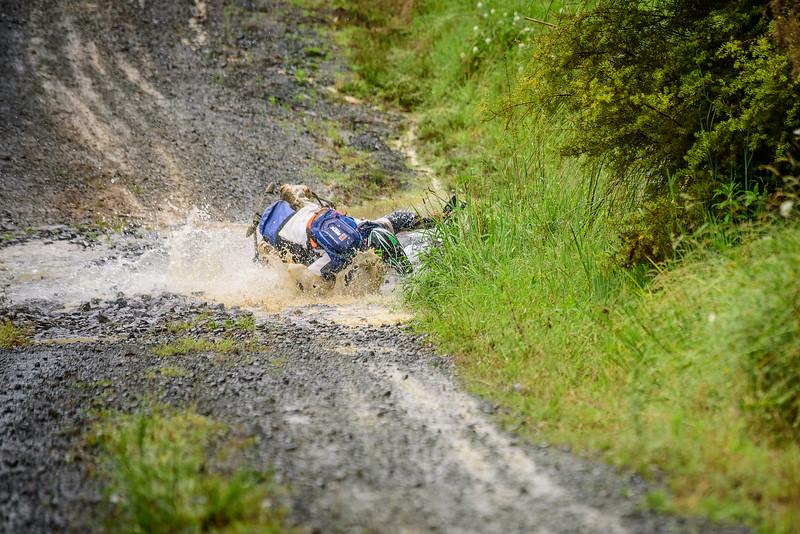 2018 KTM New Zealand Adventure Rallye - Northland (376).jpg