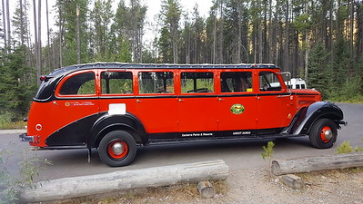 Red Bus Tour Glacier NP