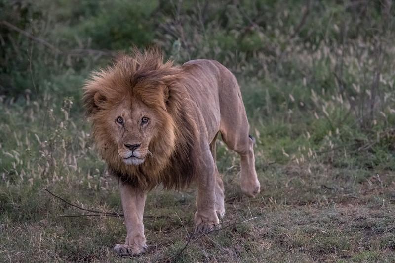 Tanzania_Feb_2018-661.jpg
