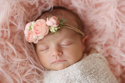Charlotte Devine- Newborn