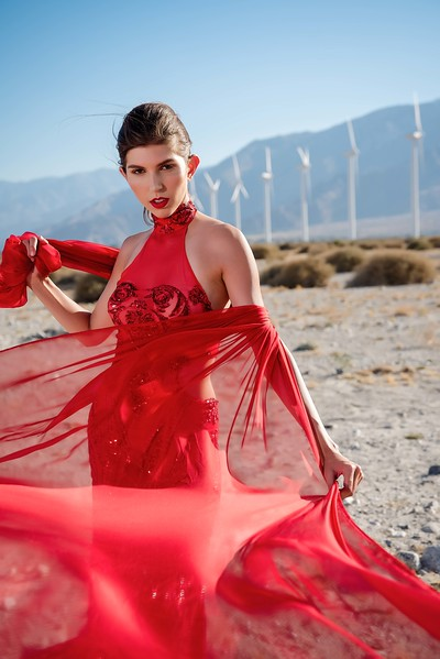 Palm Springs - Carla Nicholson