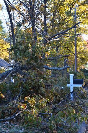 Storm Damage and Clean-Up 11-5-11 to 11-6-11