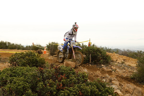 Rider 146