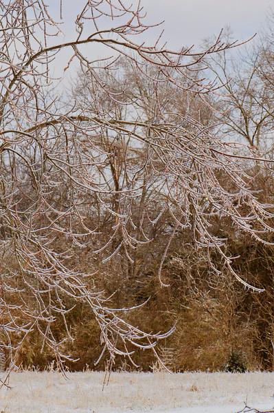 Ice_Storm30.jpg