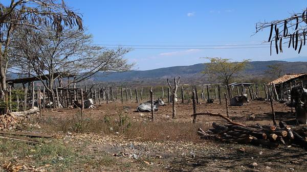 Guaricayan, Honduras, 2014