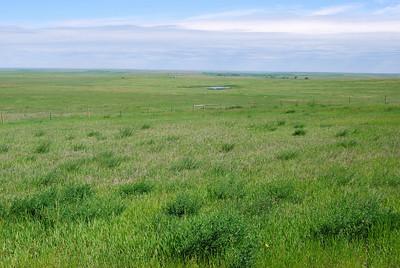 Black Hills of South and North Dakota 2010