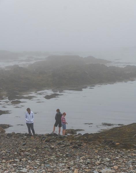 Foggy-beach.jpg