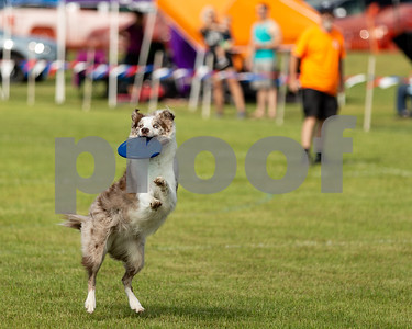 5/5/18 Pets Fur People Hosts Tyler Azalea Disc Dog/Disc Golf Challenge by Don Spivey & Jessica Payne