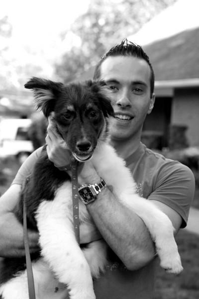 New Puppy 2008