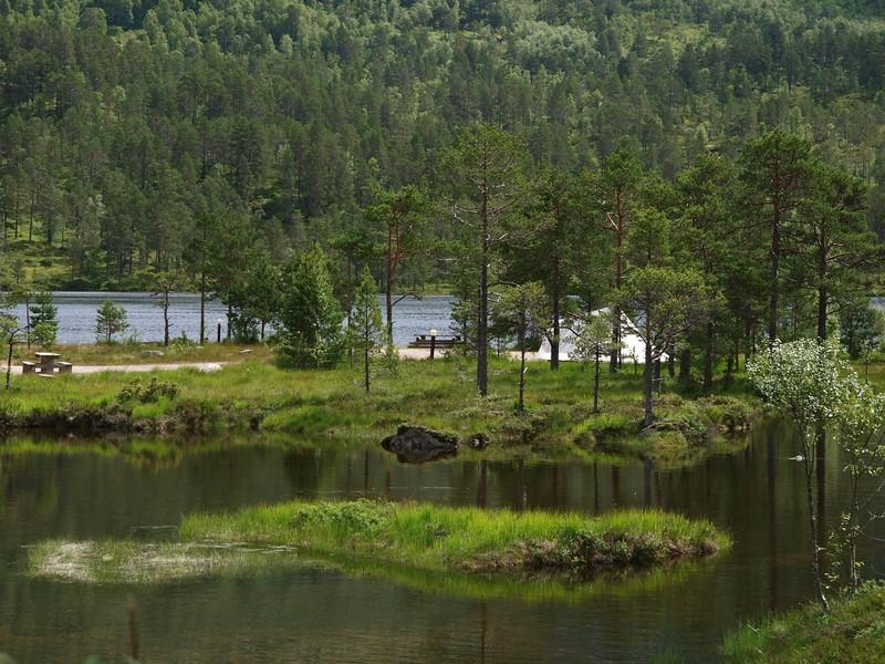 Viksdalen 18-07-11 (72).jpg