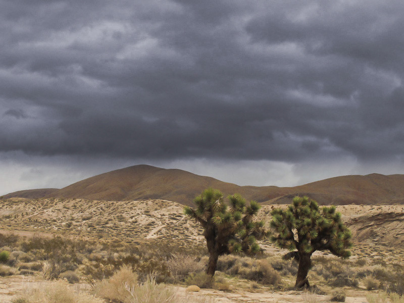 dec20-desert storm.jpg