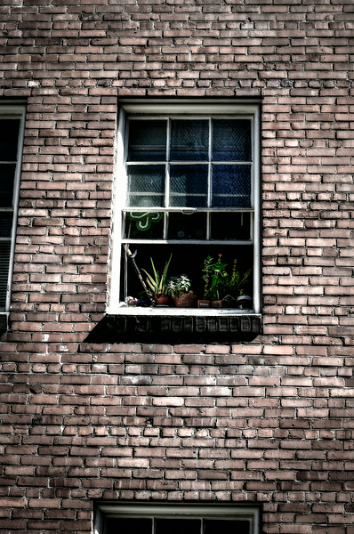 0826 Look Through Any Window