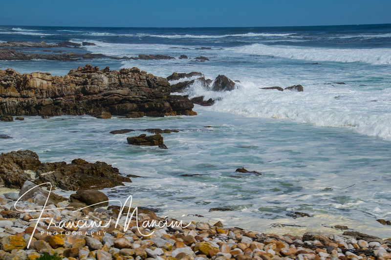 South Africa (685 of 5206).jpg