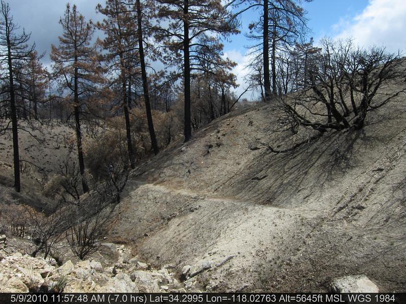 073-Vetter mtn Trail.JPG