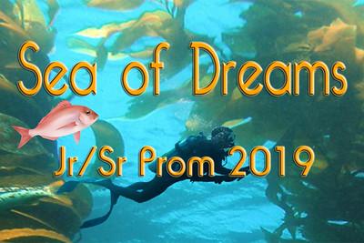 2019-03-30 Brandon High Prom