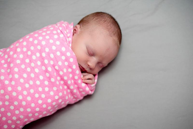 Williamsport Newborn Photographer : 6/29/16 Adley is Here!