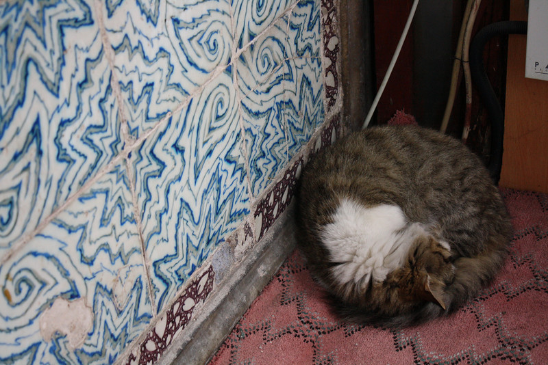 Napping at the Suleymaniye Mosque, Istanbul