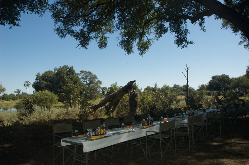 Bush lunch at Chitabe, Okavango Delta - Leslie Rowley