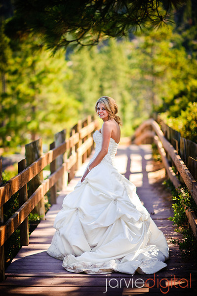 Trash the Dress (Chronological)