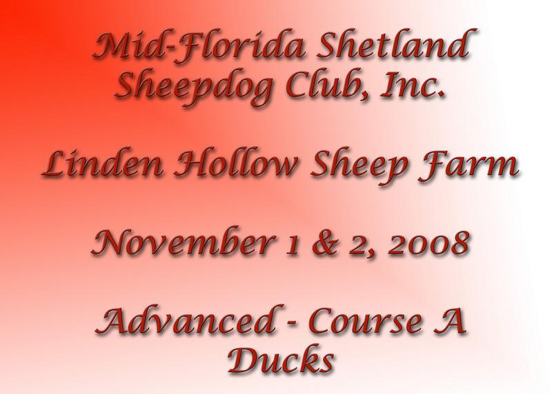 Advanced-A-Ducks-sign.jpg