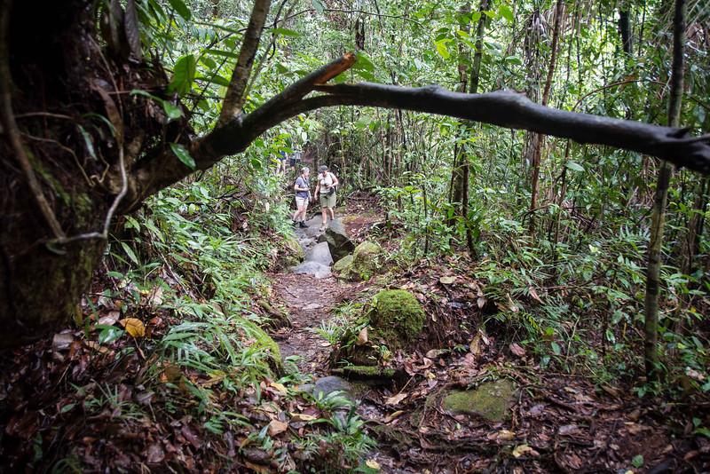 Borneo-2014-124.jpg