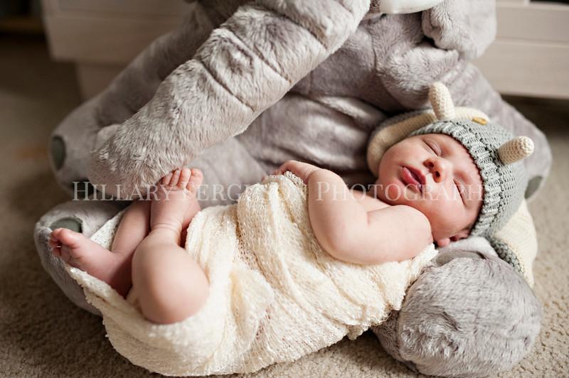 Hillary_Ferguson_Photography_Carlynn_Newborn027.jpg