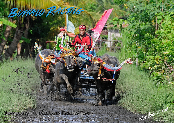 Jewels of Indonesia 14 Day Photo Tour