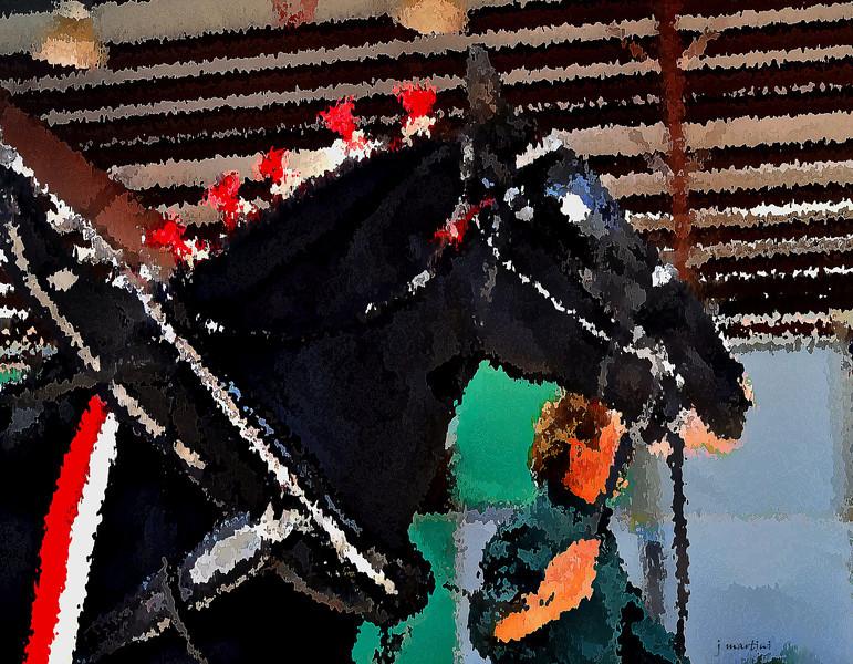 show horse 10-2-2011.jpg