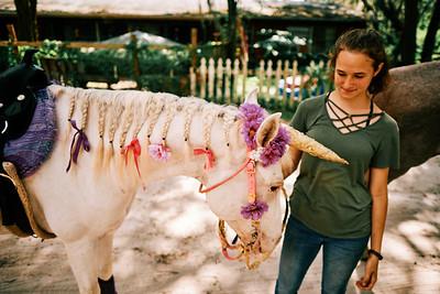 Gretchen Garber Unicorn Party