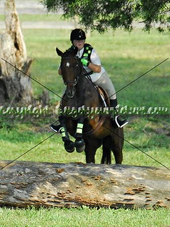 42FDL Series - Lands End Farm - Sept 2013