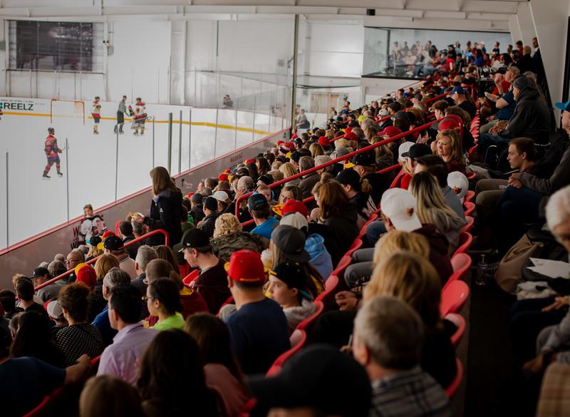 Ice Arena 5.jpg
