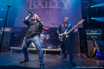 Bailey - Rockingham Festival 2017