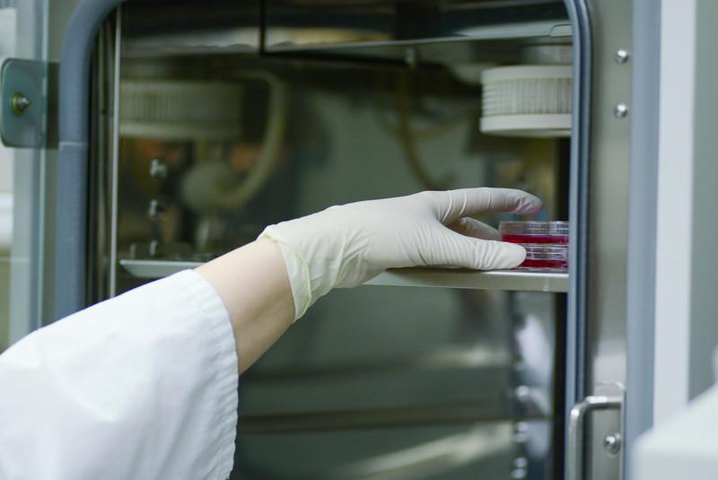 CNRM 2018 labs334.jpg