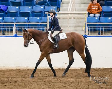 64 Breed Type Hunter Under Saddle Horses Jr