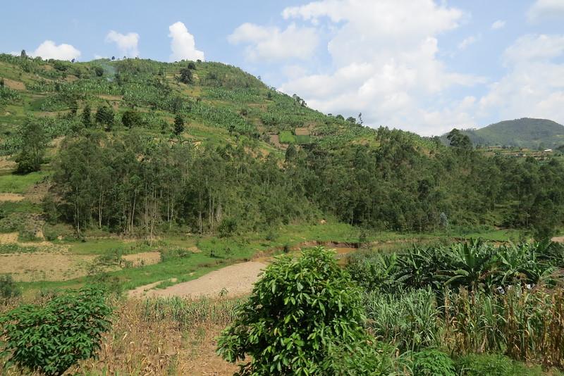 Tanzania 2016 124.JPG