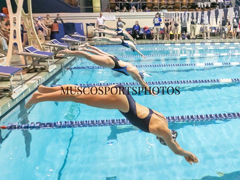Swimming-diving vs Seton Hall_1031.jpg