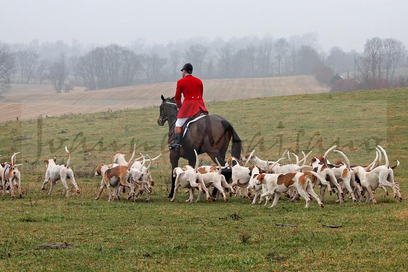 Blue Ridge Hunt at Locust Hill 12-6-14