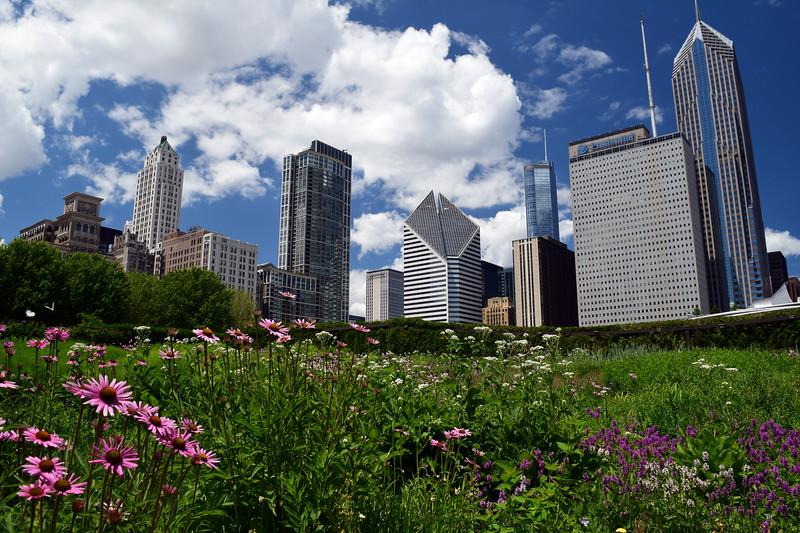 Chicago (20).jpg