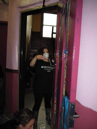 Volunteer Metro House Painting