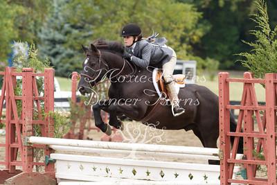 "SC/B/V Pony Hunter & Equitation 2'3"""
