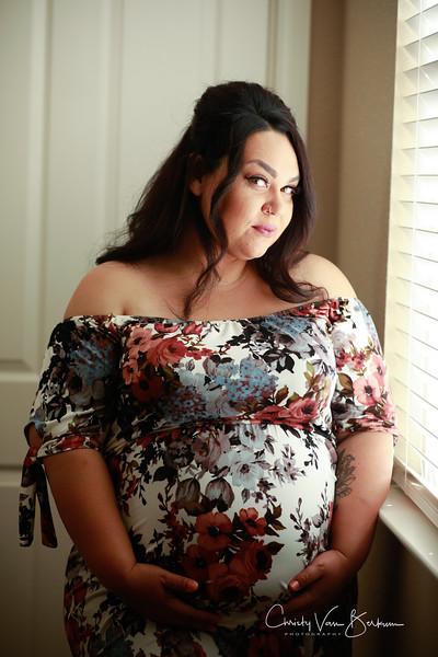 2020_May-Gonzalves-Maternity8050.jpg