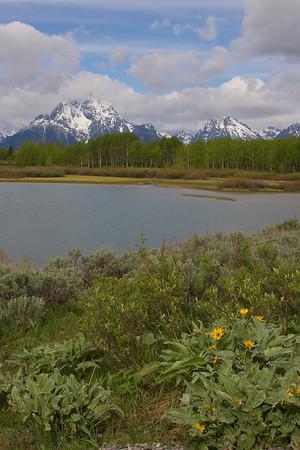 Scenic - Yellowstone/Tetons - 2007
