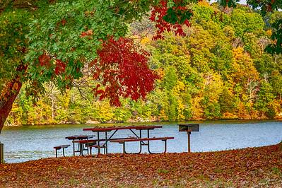 Lenoir City Loudon County Fall Color 2020