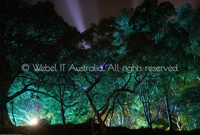 "Sydney ""Light The City"" festival 2019"