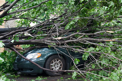 Chicago Storm Damage