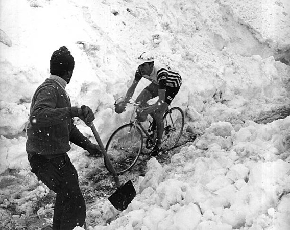 El Giro en el Stelvio